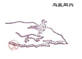 白玉/国学又西二百二十里,曰鸟鼠同穴之山,其上多白虎、白玉。
